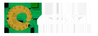 estilo Logotipo